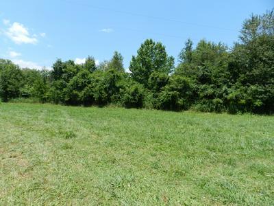 3776 PRAIRIE PLAINS RD, Hillsboro, TN 37342 - Photo 2