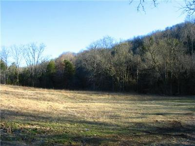 0 SPANKEM RD, Lynchburg, TN 37352 - Photo 2