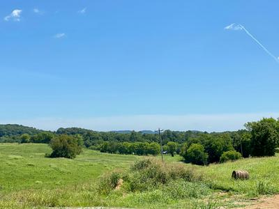 1180 HEARN HILL RD, Watertown, TN 37184 - Photo 2