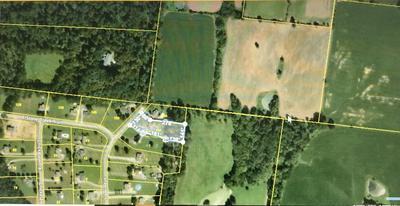 2089 SHAWNEE LN, Greenbrier, TN 37073 - Photo 2