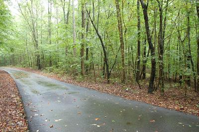 0 REYNOLDS HOLLOW RD, Lynchburg, TN 37352 - Photo 2
