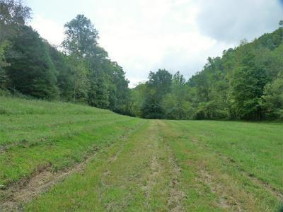 1893 PETTY GAP RD, Woodbury, TN 37190 - Photo 2