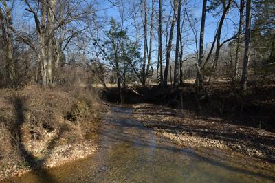 0 DEER CREEK RD, Linden, TN 37096 - Photo 1