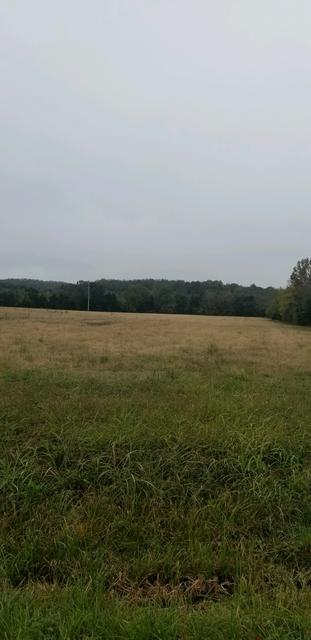 1 W TRIMBLE RD, Milton, TN 37118 - Photo 1