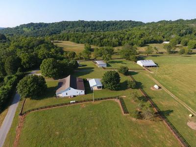 386 CREECY HOLLOW RD, Pulaski, TN 38478 - Photo 1