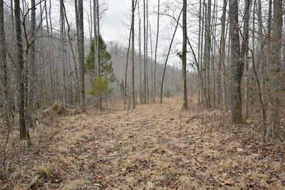 0 MAYBERRY SPUR RD, Linden, TN 37096 - Photo 2