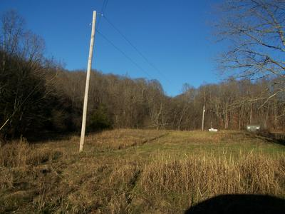 1353 BLACK RD, Prospect, TN 38477 - Photo 2