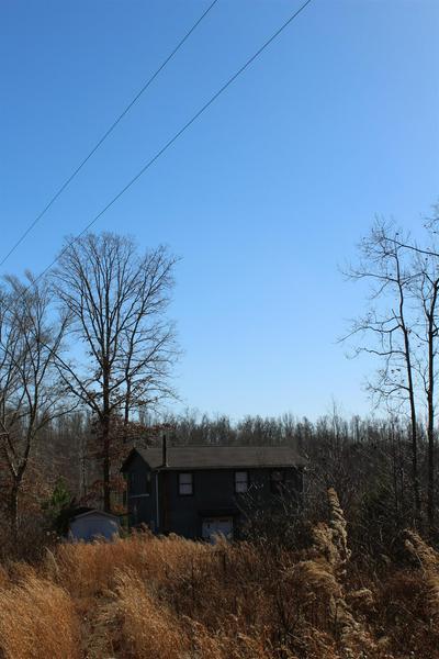 465 JAMES ZIMMERMAN RD, Hampshire, TN 38461 - Photo 2