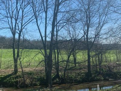 0 COOSIE BRANCH RD, Cornersville, TN 37047 - Photo 2