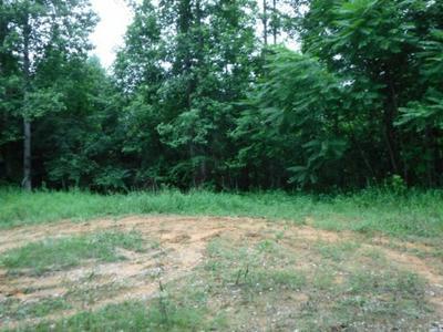 625 BILL ROBERTS ROAD, SUNBRIGHT, TN 37872 - Photo 1