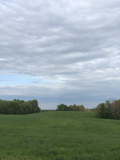 84 LEWIS ATKINS RD., Woodlawn, TN 37191 - Photo 1