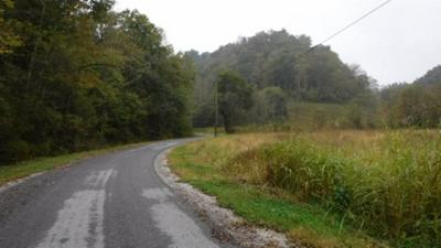 40 AC HUNTING CREEK RD, Whitleyville, TN 38588 - Photo 2