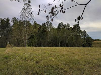 0 ANDY ANDERSON RD, Lynchburg, TN 37352 - Photo 1