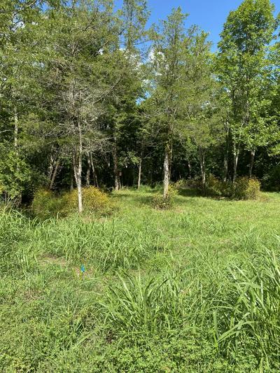 2600 LONE OAK RD, Mount Juliet, TN 37122 - Photo 2