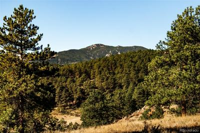 LOT 5 LEGACY RANCH, Evergreen, CO 80439 - Photo 2