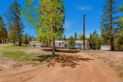5530 SKYCREST CT, Divide, CO 80814 - Photo 2