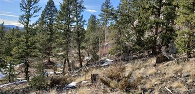 0 OLD SAWMILL ROAD, Bailey, CO 80421 - Photo 2