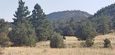 825 COUNTY ROAD 1, Cotopaxi, CO 81223 - Photo 2
