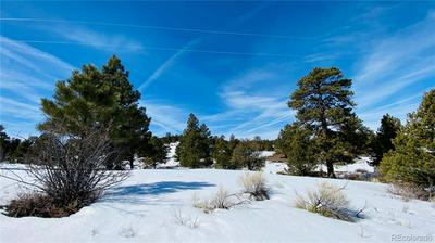 8 W CONEJOS TRAILS, Antonito, CO 81120 - Photo 1