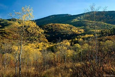 32700 FALCON DR, Steamboat Springs, CO 80487 - Photo 1