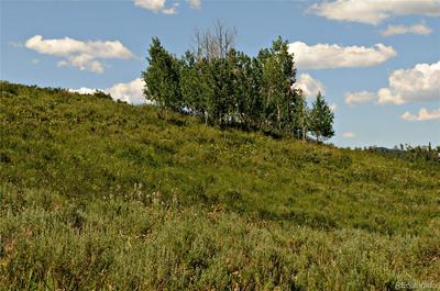 57175 GREENBIRD PL, Clark, CO 80428 - Photo 1