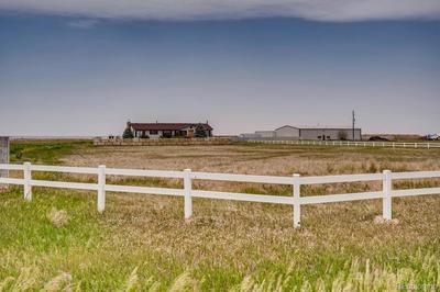 975 S ALMSTEAD RD, Watkins, CO 80137 - Photo 2