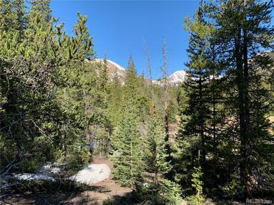 1141 CO ROAD 698, Alma, CO 80420 - Photo 2