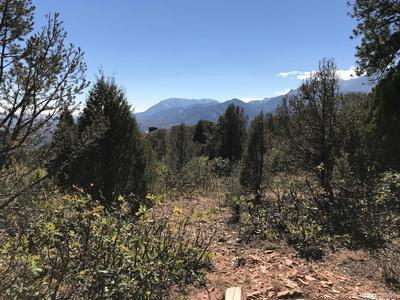 3130 ANGEL TER, Colorado Springs, CO 80904 - Photo 2