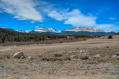 700 COTTAGE GROVE ROAD, Alma, CO 80420 - Photo 2