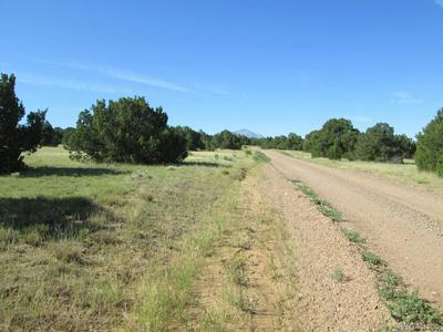 SOUTH MOUNTAIN ROAD, Walsenburg, CO 81089 - Photo 2