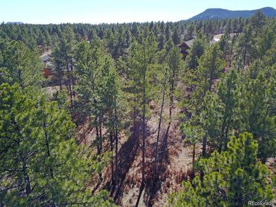 606 CUMBERLAND RD, LARKSPUR, CO 80118 - Photo 1