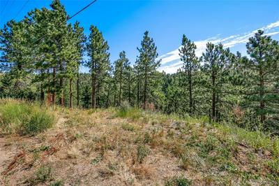 237 KELLY RD E, Boulder, CO 80302 - Photo 2