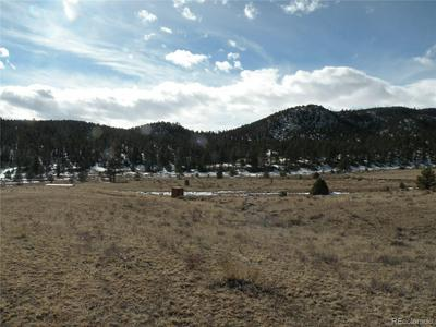 25 MCCLURE GULCH ROAD, Cotopaxi, CO 81223 - Photo 1