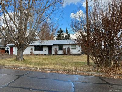 439 CLOVER CIR, Hayden, CO 81639 - Photo 1