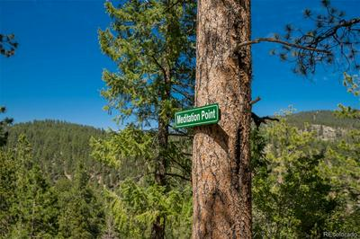 14433 S ELK CREEK RD LOT 1, Pine, CO 80470 - Photo 2