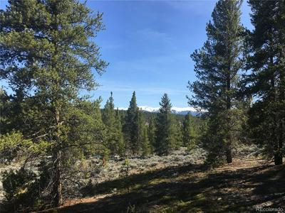 1TBD COUNTY ROAD 36A, Leadville, CO 80461 - Photo 1