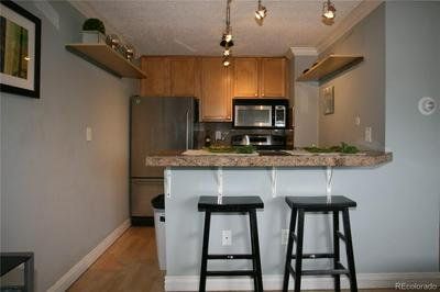 1125 N WASHINGTON ST APT 604, Denver, CO 80203 - Photo 2