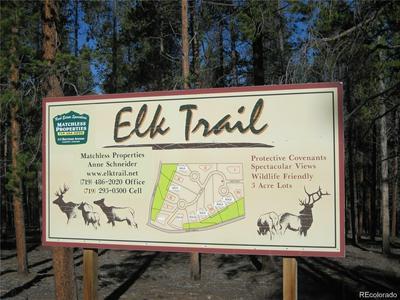 15 ELK TRL, LEADVILLE, CO 80461 - Photo 2