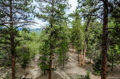 2302 MOUNT EVANS BLVD, Pine, CO 80470 - Photo 2