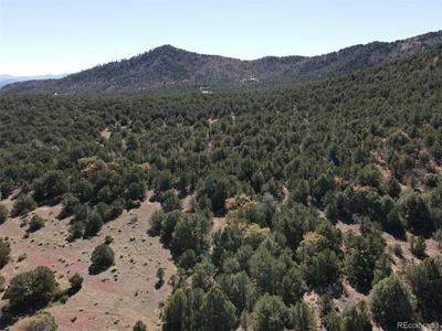 LOT 33 REED ROAD, Cotopaxi, CO 81223 - Photo 2