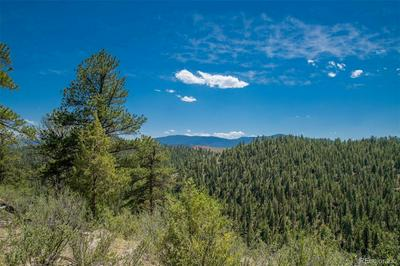 14433 S ELK CREEK RD LOT 9, Pine, CO 80470 - Photo 2