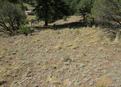 6693 COUNTY ROAD 328, Westcliffe, CO 81252 - Photo 2