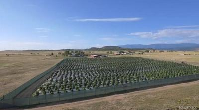 7791 STATE HIGHWAY 78 W, Beulah, CO 81023 - Photo 2