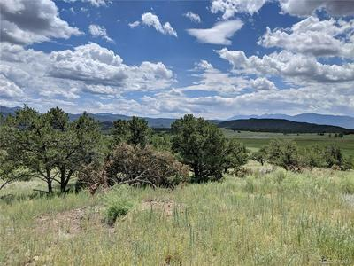 LOT 3, Nathrop, CO 81236 - Photo 2