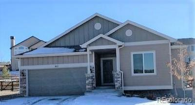 803 TAILINGS DR, Monument, CO 80132 - Photo 1