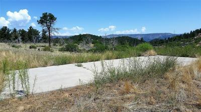 221 COTTONWOOD DR, Cotopaxi, CO 81223 - Photo 2