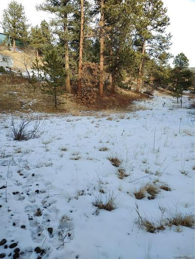 33750 WARREN RD, Pine, CO 80470 - Photo 1