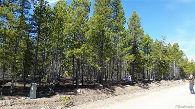 910 PEAK VIEW DR, Twin Lakes, CO 80461 - Photo 2