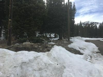 000 NUGGET LANE, Alma, CO 80420 - Photo 1