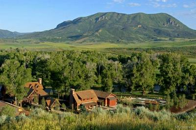 41900 MARABOU LOOP, Steamboat Springs, CO 80487 - Photo 2